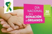 GRACIAS A NUESTRO DONANTES RENACEMOS!!